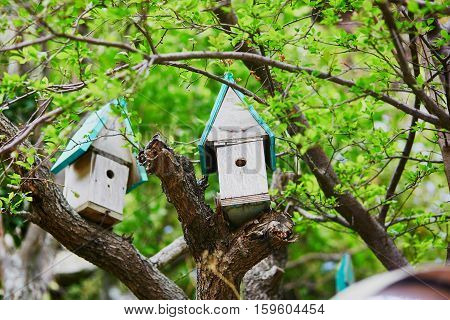Two Nesting Boxes For Birds