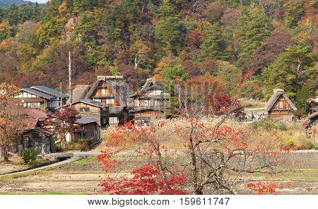 Houses In Historic Village Shirakawa-go, Gifu Prefecture, Japan
