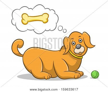 Hungry dog thinking about dog food. Best for dog, pet, animal concept.