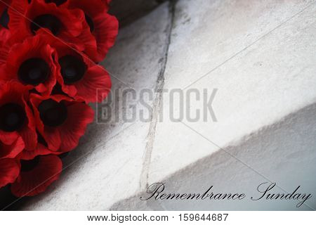 Abstract Creative Remembrance Sunday Poppy Greeting Scene