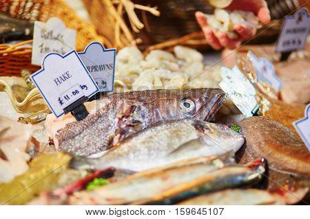 Fresh Hake On London Fish Market
