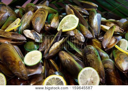 Fresh Seafood mussels in a buffet restaurant