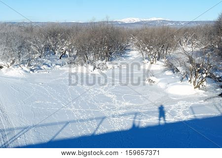 Snowcapped landscape. Snowcapped mountain. Trees. Shadow. Traces on snow.