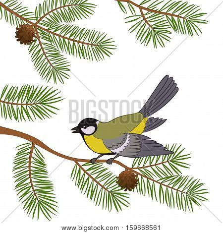 Bird Titmouse Sitting on Pine Tree Branch with Green Needles and Cones, Isolated on White Background. Vector