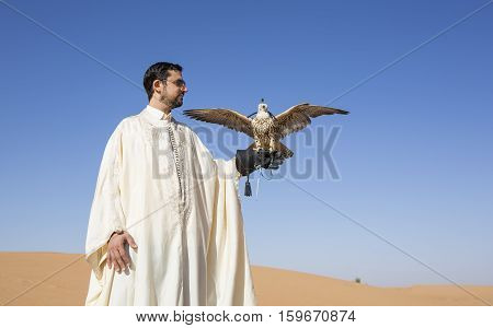 Tunisian man with a saker falcon in a desert at sunrise