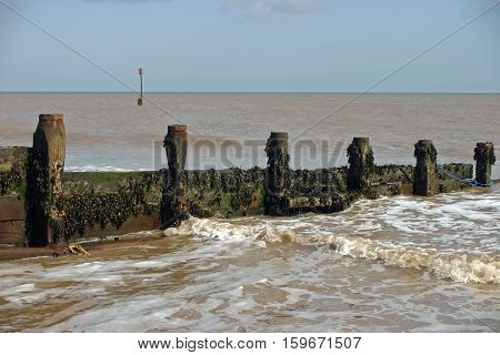 Wooden breakwater (groyne) covered in brown seaweed on a sandy beach with calm sea lapping against the shore. Blue and yellow rope on the breakwater. Background with marker post and blue sky with white cloud.