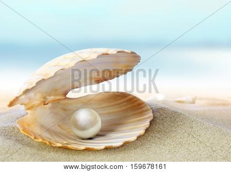 Open Oyster With Pearl On The Background Of Sand