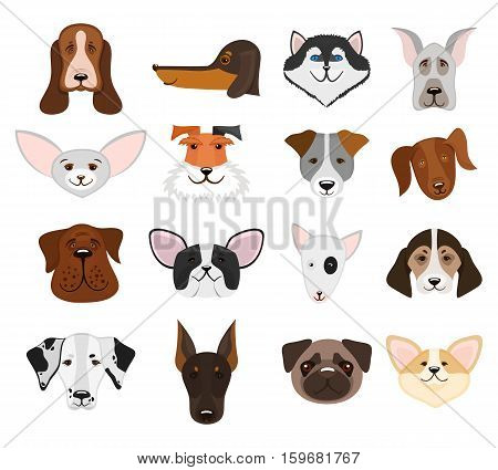 Set of muzzle dogs and heads pedigree doggy isolated on white background. Vector illustration