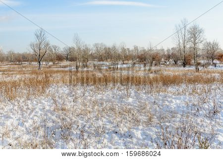 Lowland Covered By Snow
