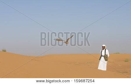 Dubai UAE December 2nd 2016: Falconer training a desert owl