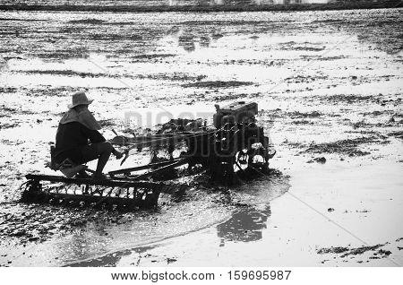 Farmer using tiller machine in rice field Thailand