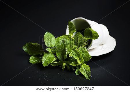 White porcelain cup of mint and lemon balm on a black background