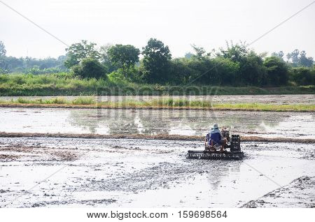 Farmer using tiller machine in the rice field
