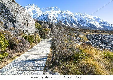 Hooker valley walking trek at Mouth Cook New Zealand