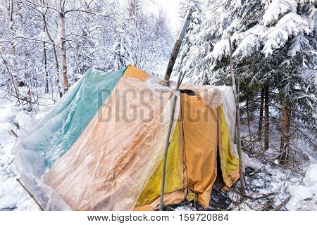 Winter forest. Old yellow tent. Winter ski trip