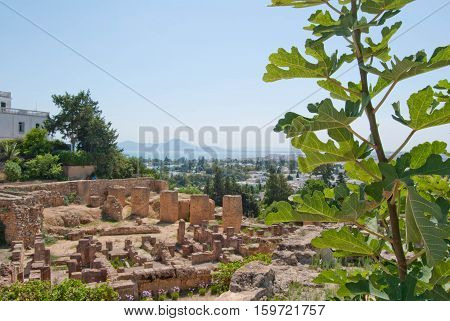 Carthage ancient ruins view at Tunisia Africa