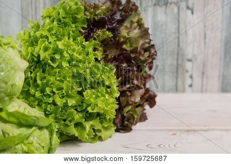 Variery of green and red fresh lettuce salad leaves - healthy low calorie food