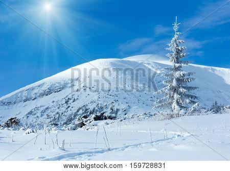 Sunshiny Winter Mountain Landscape