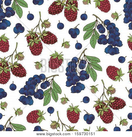 Vector hand drawn seamless pattern with berries (raspberry bilberry blueberry)