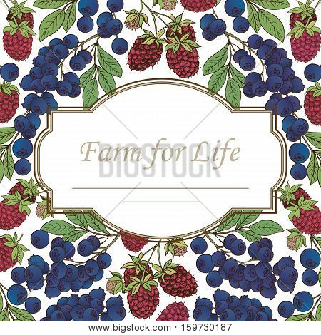 Сard template.Vector frame label with hand drawn berries (raspberry bilberry blueberry)