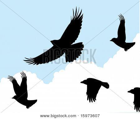birds in flight one vector