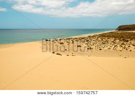 Aerial view on famous beach Playa de Sotavento on the Canary island Fuerteventura Spain.