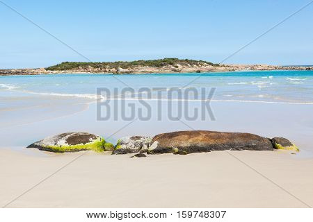 The beach at Madfish Bay in William Bay National Park near the town of Denmark, Western Australia.