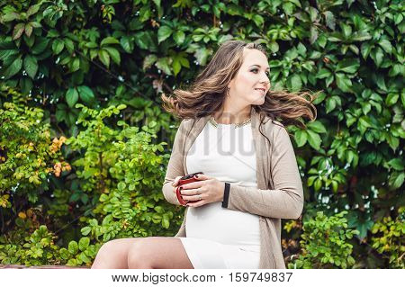 A Pregnant Young Woman Standing At The Hedge, Holding Belly. Pregnant Woman Relaxing In The Park.