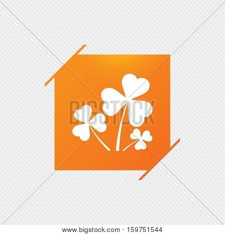 Clovers with three leaves sign icon. Saint Patrick trefoil shamrock symbol. Orange square label on pattern. Vector