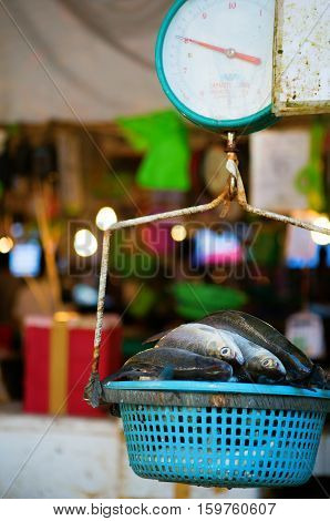 Fresh Fish On Weigh Scales On A Market