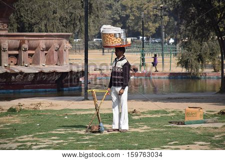 NEW DELHI, INDIA - FEBRUARY 02, 2016 - Unidentified indian guy with a basket of food on his head