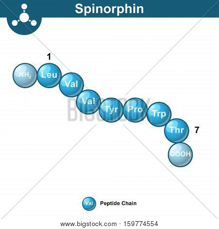 Spinorphin molecular structure amino acid sequence scientific 3d vector illustration in ball style isolated on white background eps 10