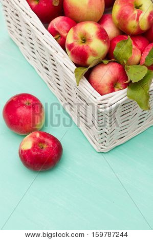 Top view on white basket full of fresh red organic apples on turquoise background. Autumn Harvest. Healthy snack.