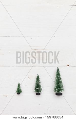 Top view on three little Christmas trees on white wooden background. Holidays and winter concept.