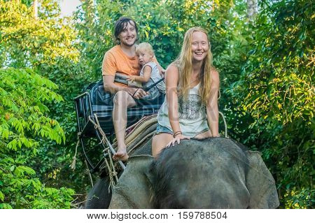Happy Family Riding On An Elephant, Woman Sitting On The Elephant's Neck