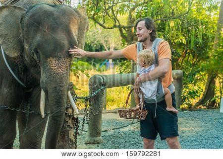 A Man With A Baby Feeding Elephant