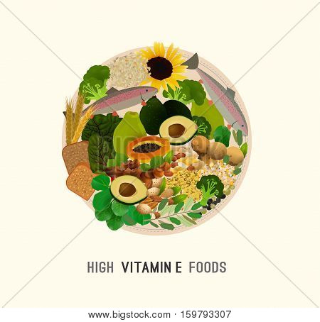Vitamin E vector illustration. Foods containing vitamin E on the plate. Source of vitamin E - nuts, corn, vegetables, fish, oils isolated on white background