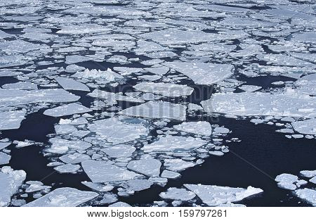 Antarctica, Weddell Sea, ice floe