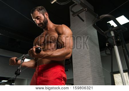 Powerful Muscular Man Exercising Biceps On Cable Machine