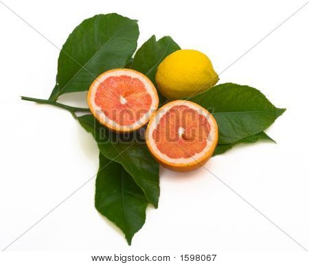 Lemon And Grapefruit