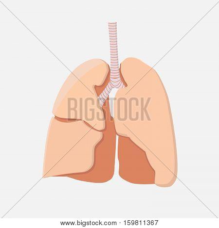 Lungs Icon. Human Internal Organ.