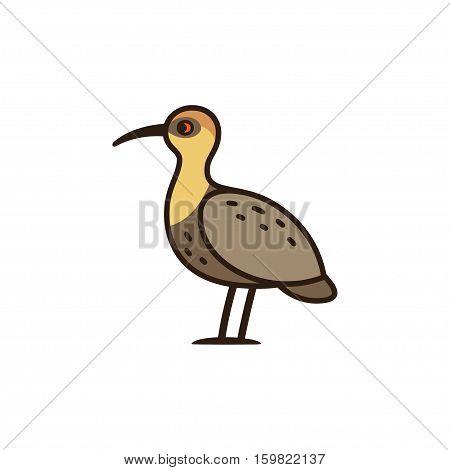 Bandurria or Black faced Ibis big bird native to South America. Cartoon vector illustration.