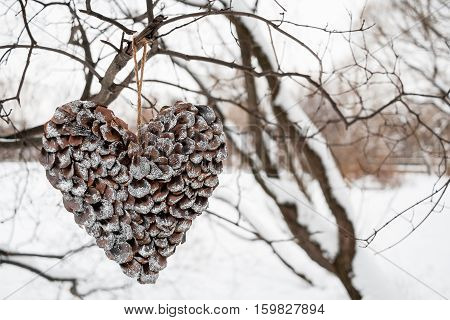Heart of scales of pine cones covered with silver sequins hanging on tree on white winter background.