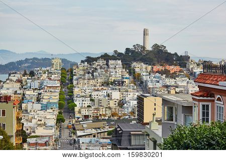 Scenic View At Coit Tower In San Francisco, Usa