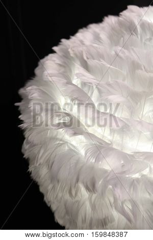 lamps with lampshade made of white feathers