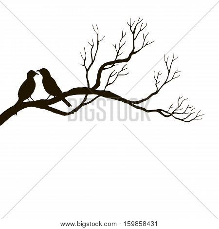 vector silhouettes of birds at tree, hand drawn songbirds at branch, Valentine symbol, a pair of lovers, isolated vector element