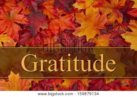 Being grateful message Some fall leaves with text Gratitude