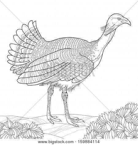 Vector illustration with male Great Bustard or Otis tarda in contour style isolated on white background with ornate leaves. Outline wild bird for coloring book in line art style.