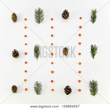 Creative Natural Pattern Of Winter Plants On White Background. Flat Lay, Top View