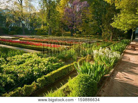 Madrid Botanic Garden - Real Jardin Botanico.